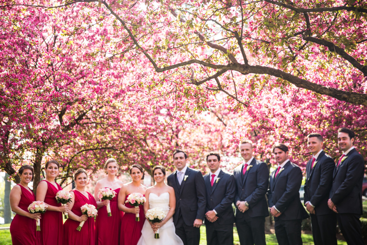 Lauren and Jimmy | Wedding at the Providence Biltmore | Wedding party under the blossoms