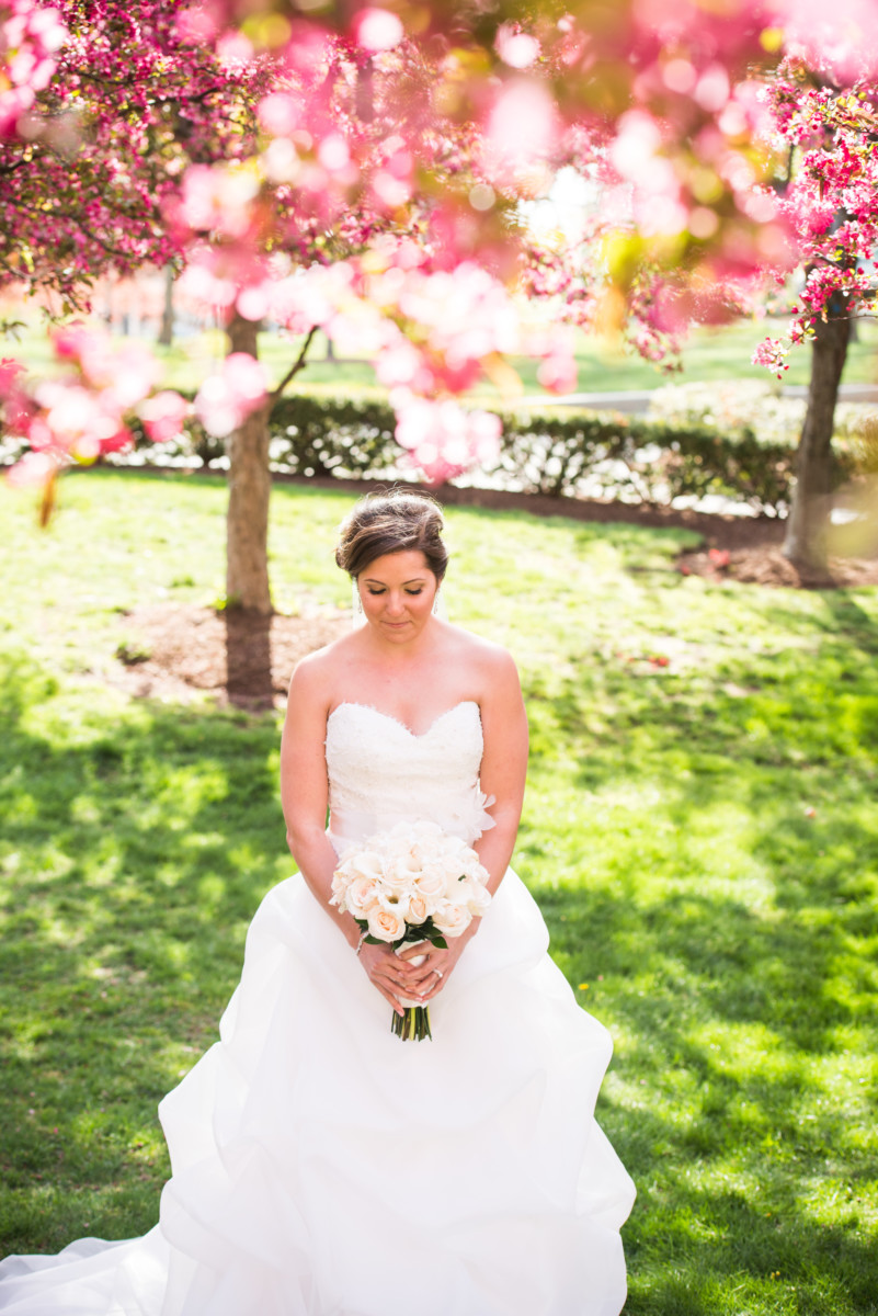 Lauren and Jimmy | Wedding at the Providence Biltmore | Bride under the blossoms
